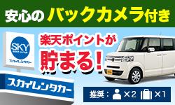 N-BOX(バックカメラ付)