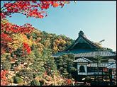 西福寺・写真