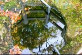 弘法池・写真