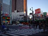 歌舞伎町・写真