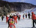 聖高原スキー場のイメージマップ