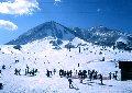 木島平スキー場のイメージマップ
