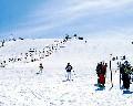 ファミリーゲレンデ霧ヶ峰スキー場のイメージマップ