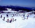 茶臼山高原スキー場のイメージマップ