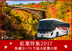 紅葉特集2017年:快適なバスで巡る紅葉の旅