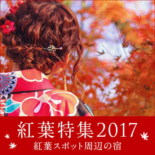 """【季節ごとの食材を愉しめる】夕・朝食付/""""じょんのび""""プラン"""