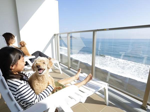 レジーナリゾート鴨川-Dog Wellness Beach-