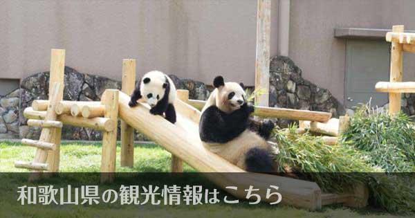和歌山県のおすすめ観光スポット