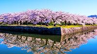 春旅北海道キャンペーン!