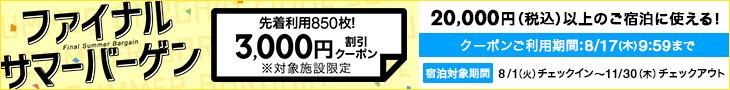 クーポン3000