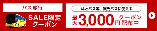 最大3,000円クーポン配布中