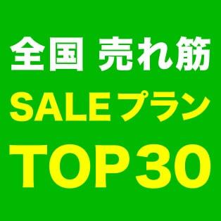 全国売れ筋SALEプランTOP30