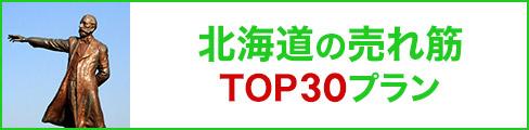 北海道の売れ筋トップ30プラン