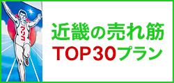 近畿の売れ筋トップ30プラン