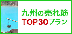 九州の売れ筋トップ30プラン