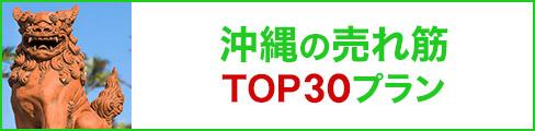 沖縄の売れ筋トップ30プラン