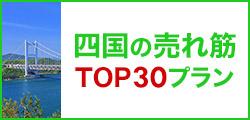 四国の売れ筋トップ30プラン