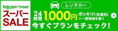 24時間1,000円ポッキリ!楽天スーパーSALE