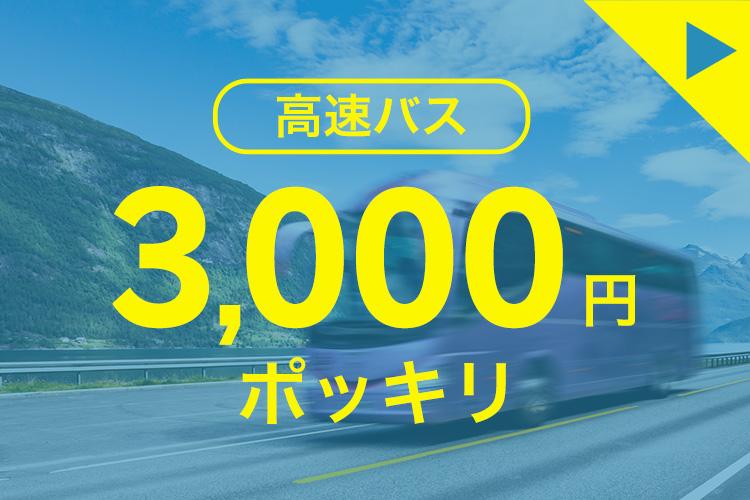 高速バス 3,000円ポッキリ