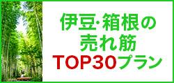 伊豆・箱根の売れ筋トップ30プラン