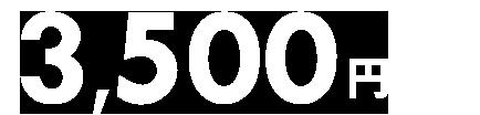 【国内ツアー】2月6日から11月30日のご旅行に使える3,500円クーポン(先着利用2,000枚)