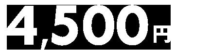 【ANA楽パック】1月16日から11月30日のご旅行に使える4,500円クーポン(先着利用1,500枚)