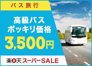 高級バスが3,500円ポッキリ