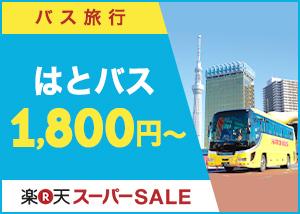 【ポイント10倍】観光バス