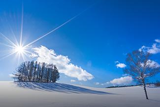 冬に行きたい、北海道