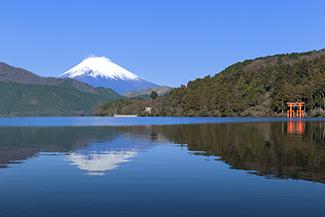 冬に行きたい、伊豆・箱根