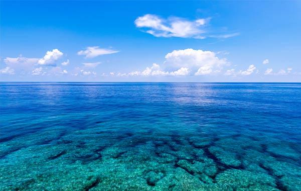 冬に行きたい、沖縄